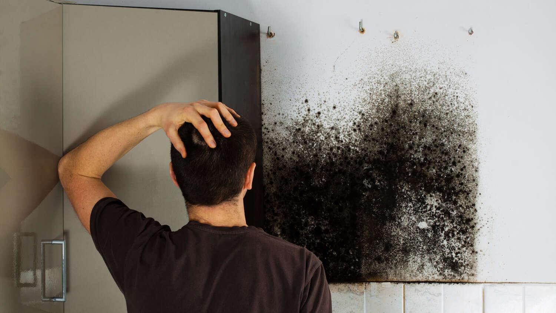 Muffa pareti eco isolamento termico